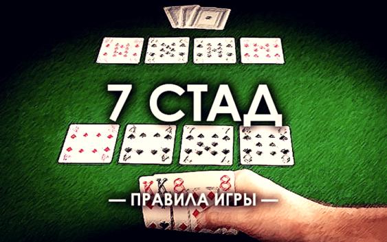 правила стада на 7 карт
